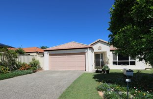 Picture of 16 Amie Place, Raceview QLD 4305