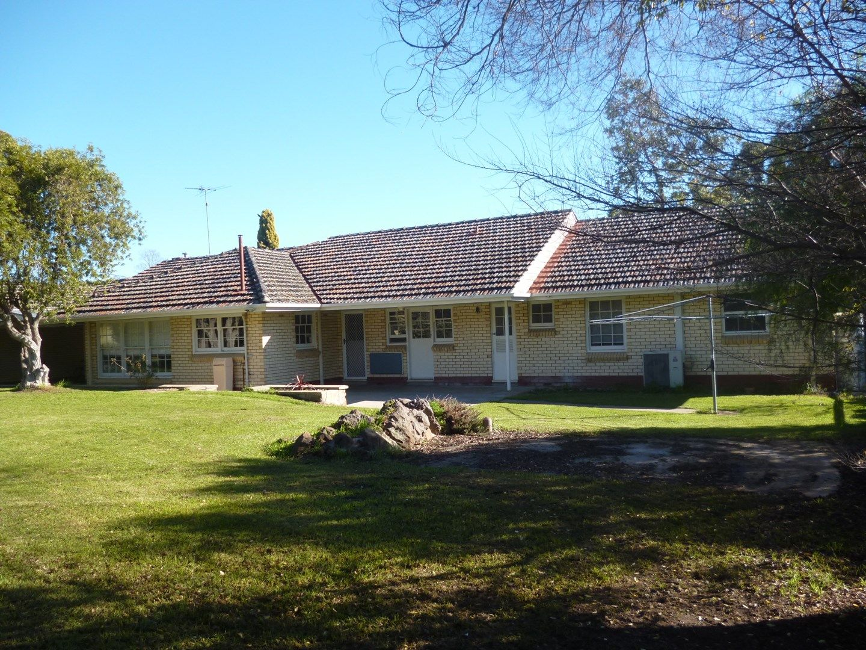 43 Jenkins Terrace, Naracoorte SA 5271, Image 0