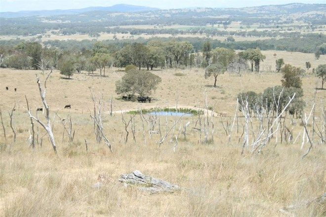 Picture of 214 Tarban Road, TENTERFIELD NSW 2372