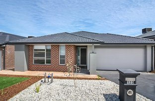 Picture of 123 Horizon Boulevard, Greenvale VIC 3059