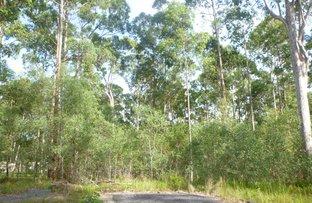 31 Gecko Drive, Woombah NSW 2469