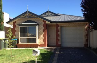 Picture of 54A Vine Terrace, Klemzig SA 5087
