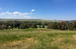 Picture of Lot 2 Ormond Street, Shelford VIC 3329