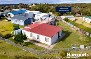 Picture of 14 Main Road, Musselroe Bay TAS 7264