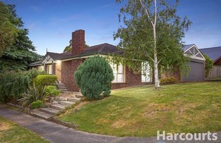 61 Democrat Drive, The Basin VIC 3154