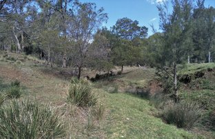Picture of Lot 532 McCafferty Rd, Merritts Creek QLD 4352
