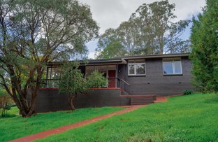 Picture of 1 Bartlett Place, Bridgetown WA 6255