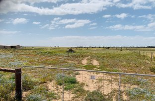 Picture of S1152 Giesecke Road, Moonta SA 5558