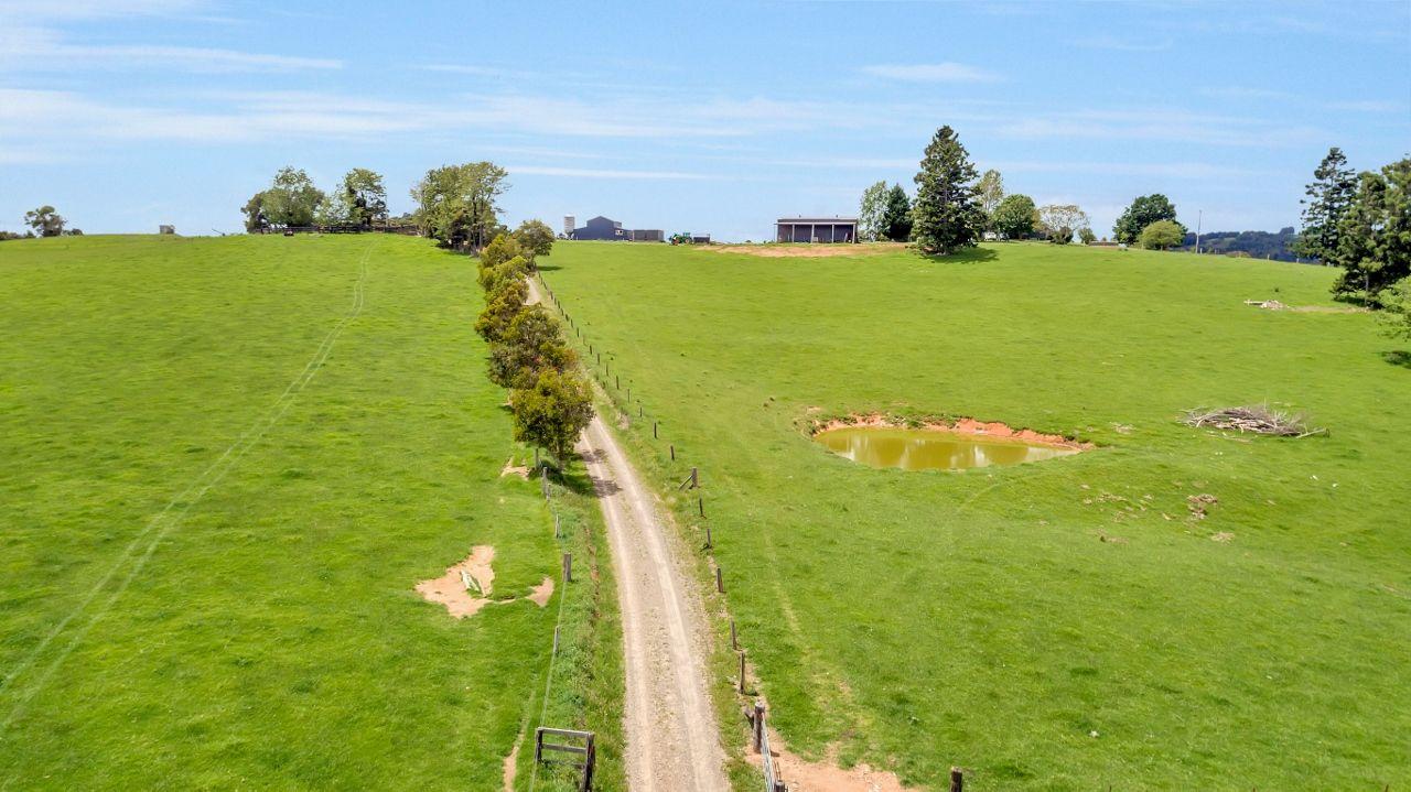 260 Rodgers Road, Dorrigo NSW 2453, Image 2