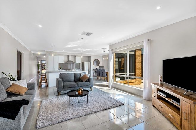 Picture of 10 Amicus Street, OCEAN GROVE VIC 3226