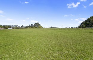 Picture of 231 Mud Island Road, Sackville North NSW 2756