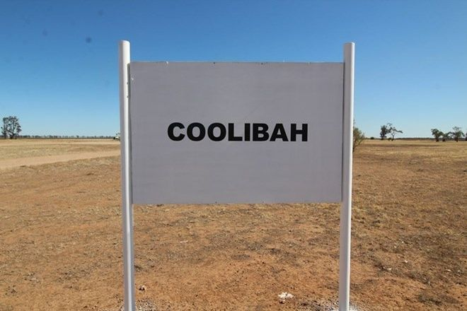Picture of Coolibah, MUNGINDI NSW 2406