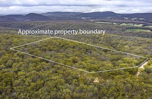 Picture of Woodlands NSW 2575
