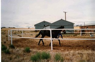 Picture of 1041 Australian Plains Road, Eudunda SA 5374