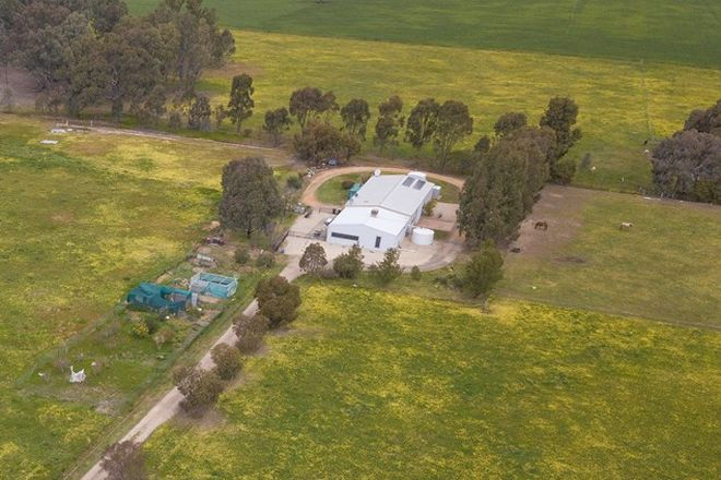 Picture of 191 Colvin Rd, BOORHAMAN NORTH VIC 3685