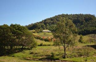 184 Barrabaroo Road, Cobargo NSW 2550
