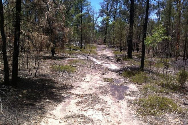 Picture of Lot 22 Hookswood-Pelham Rd, HOOKSWOOD QLD 4415