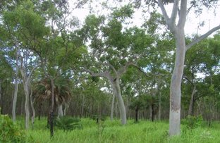 Picture of 1384 Endeavour Valley Road, Cooktown QLD 4895