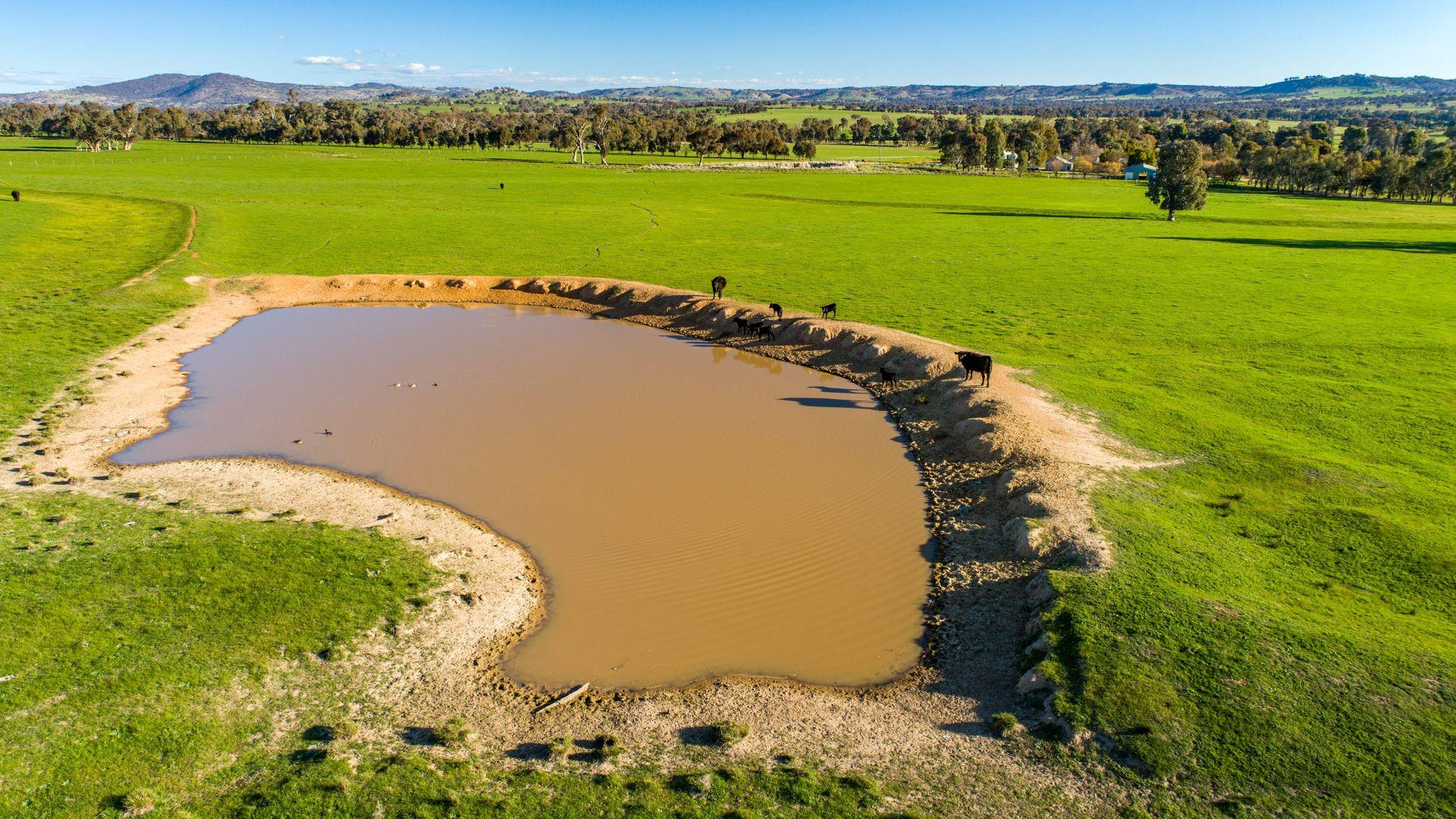 Tumbarumba Road, Wagga Wagga NSW 2650, Image 1