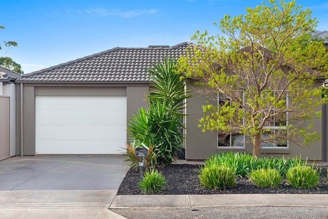 Picture of 51 Dunorlan Road, EDWARDSTOWN SA 5039