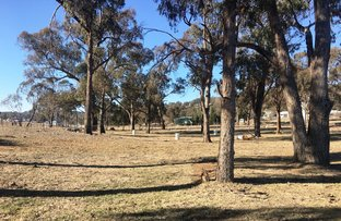 Picture of 199w Hill Street, Walcha NSW 2354