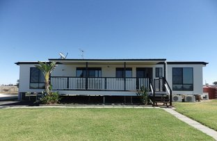 Picture of 48 Orallo Road, Roma QLD 4455