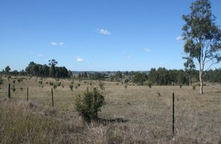 Picture of Wollombi Road, Farley NSW 2320
