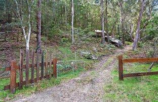 Picture of 475 Webbs Creek Road, Webbs Creek NSW 2775