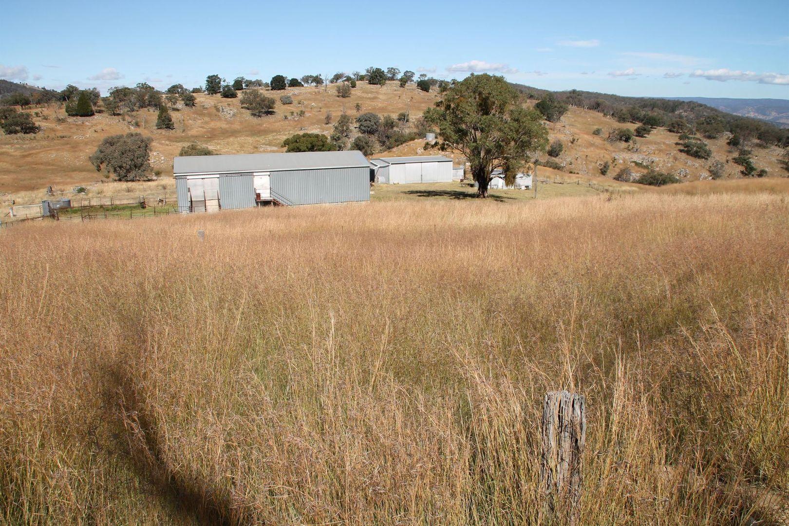 Lot 15 Gunyah Road, Tenterfield NSW 2372, Image 0