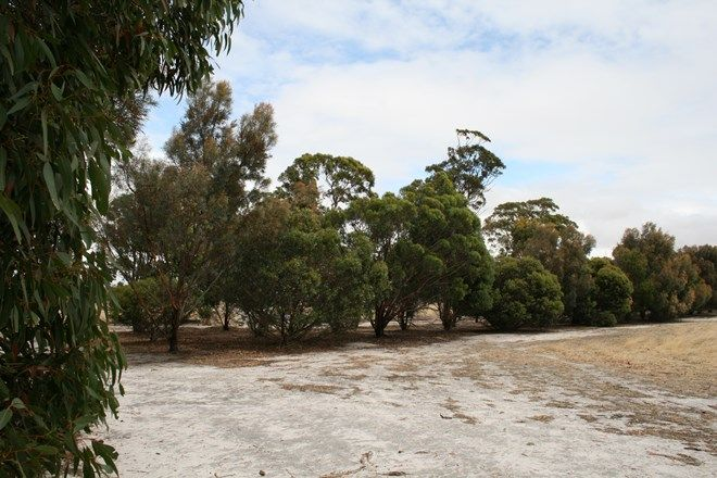 Picture of Lot385/385 Spencer Road, BROOMEHILL VILLAGE WA 6318