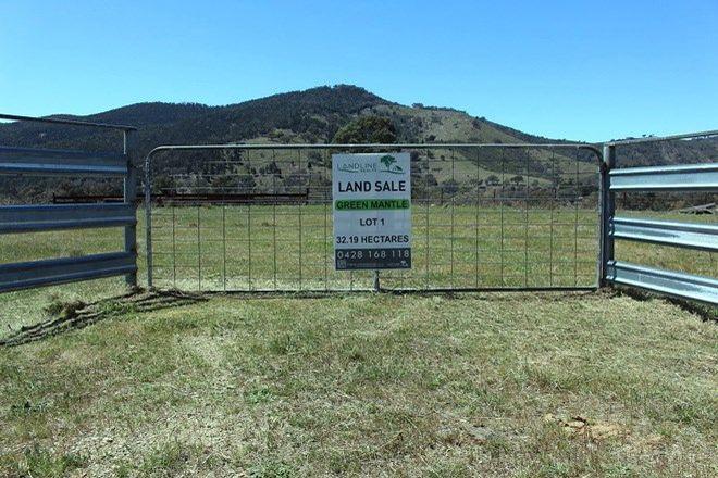 Picture of Lot 1 Greenmantle Road, BIGGA NSW 2583