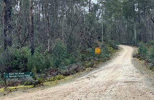 Picture of Bare Hill Road, Mersey Forest TAS 7304