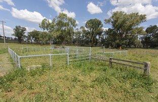 Picture of 'North Darrowby' Lot 21 Bingara Road, Barraba NSW 2347