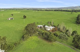 Picture of . Trenton Valley, Won Wron VIC 3971