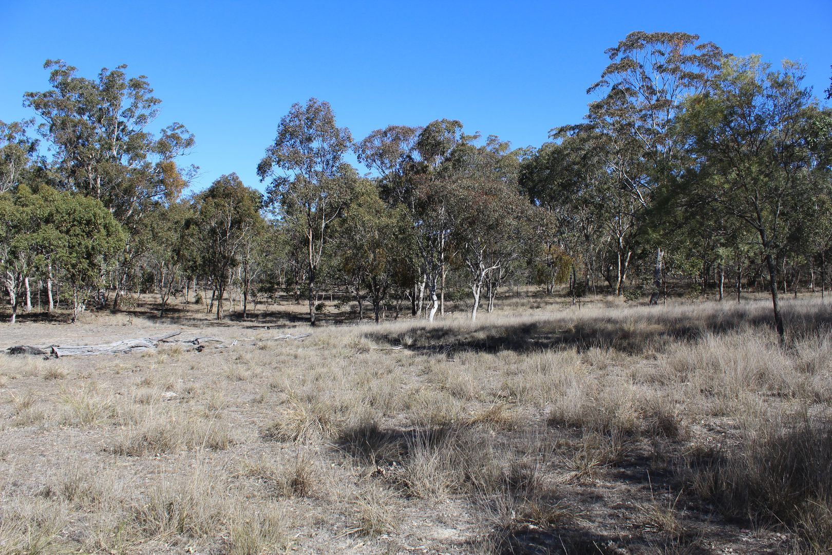 Lot 607 Connolly Dam Rd, Silverwood QLD 4370, Image 0