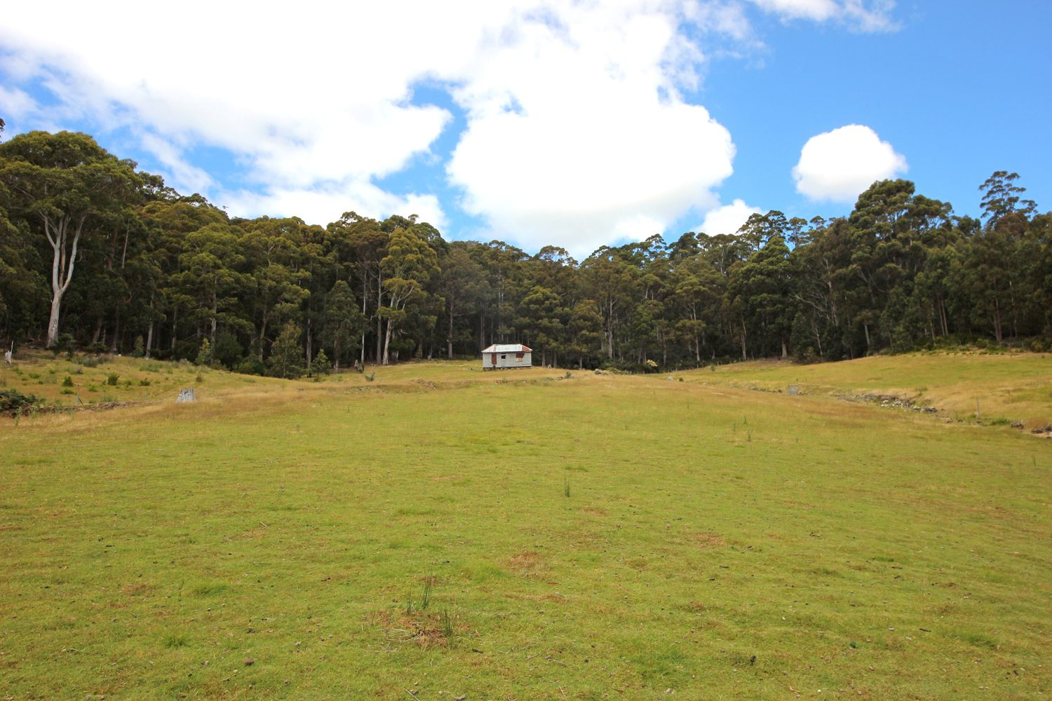 164 Mount Hull Road, Collinsvale TAS 7012, Image 1