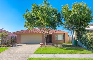 Picture of 20 Ferncliffe Street, Upper Coomera QLD 4209