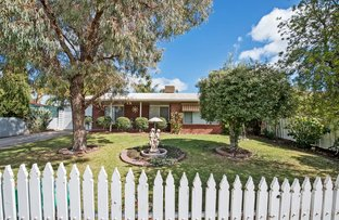Picture of 20 Domaille Crescent, Swan Hill VIC 3585
