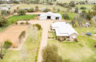 3926 Olympic Highway, Junee NSW 2663