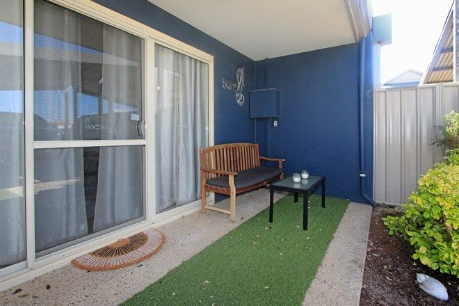 Picture of Unit 53 Seafront Estate, JURIEN BAY WA 6516