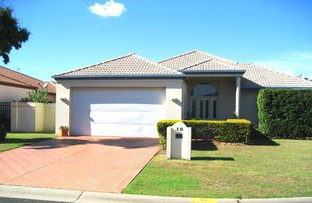 Picture of 10 Wisemans Court, Helensvale QLD 4212