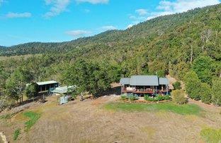 Picture of 385 Sugarloaf Road, Riordanvale QLD 4800