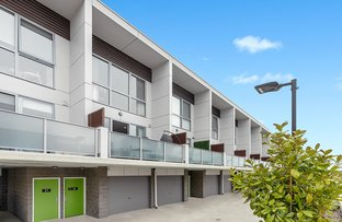 Picture of 38/815 Horse Park Drive, Amaroo ACT 2914