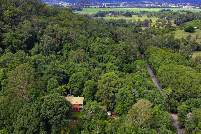 Picture of 342 Brooks Road, KYNNUMBOON NSW 2484