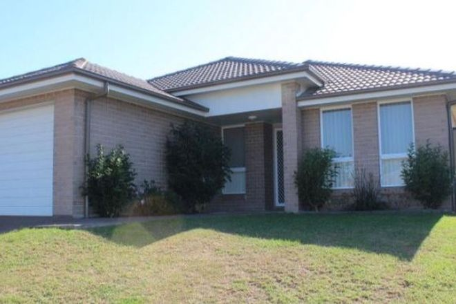 6 Verdelho Avenue, CESSNOCK NSW 2325