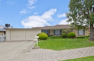 Picture of 9 Esperance Terrace, Valley View SA 5093