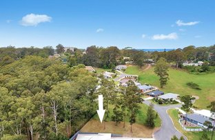 Picture of 12 Callistemon Place, Nambucca Heads NSW 2448