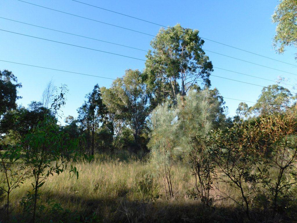 Lot 27 Memerambi Barkers Creek Road, Nanango QLD 4615, Image 0