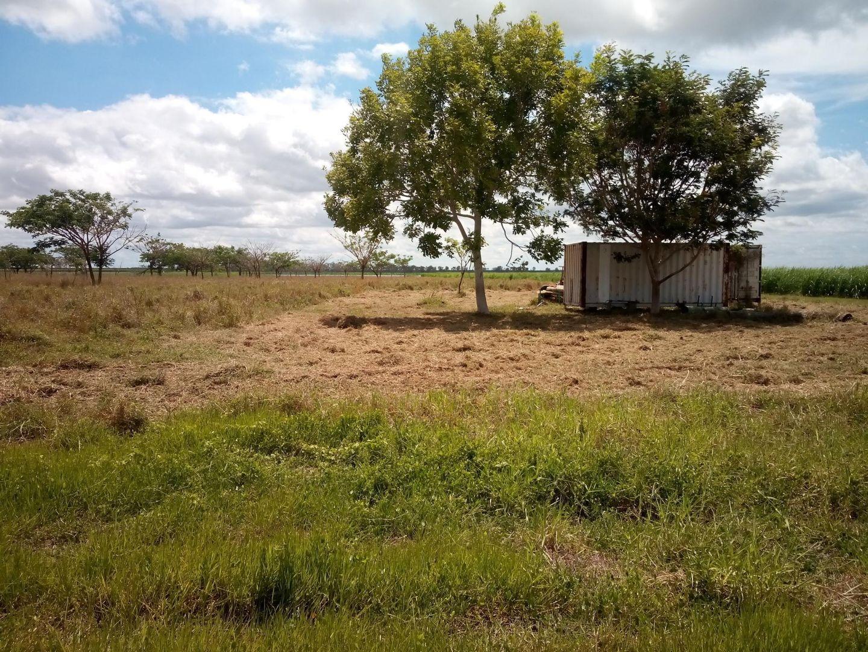 214 Hodel Road, Giru QLD 4809, Image 2