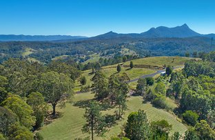 Picture of Lot 10, 2981 Mebbin Springs, Kyogle Road, Kunghur NSW 2484